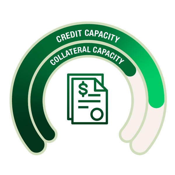 Credit and Collateral Capacity